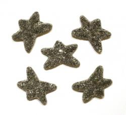 1000g Super Salty Starfish